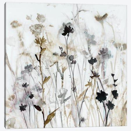 Wildflower Mist I Canvas Print #CRO902} by Carol Robinson Canvas Art