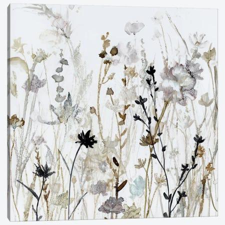 Wildflower Mist II Canvas Print #CRO903} by Carol Robinson Canvas Art