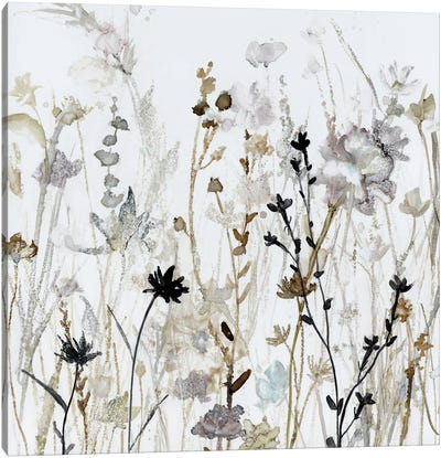 Wildflower Mist II Canvas Art Print