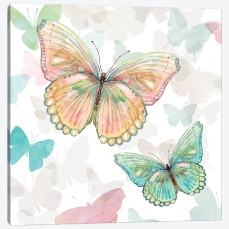 Asbury Garden Butterflies I Canvas Print #CRO905} by Carol Robinson Canvas Print