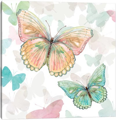 Asbury Garden Butterflies I Canvas Art Print