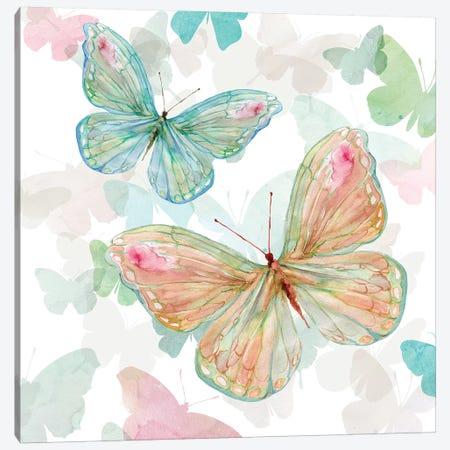 Asbury Garden Butterflies II Canvas Print #CRO906} by Carol Robinson Canvas Print