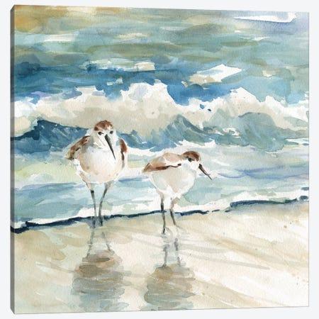 Beach Birds Canvas Print #CRO907} by Carol Robinson Art Print