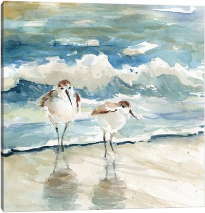 Beach Birds Canvas Art Print