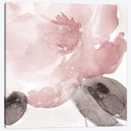 Blush Bloom I Canvas Print #CRO909} by Carol Robinson Canvas Wall Art