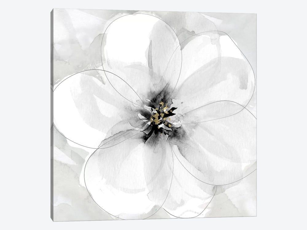 Bold Beginnings I by Carol Robinson 1-piece Canvas Art Print