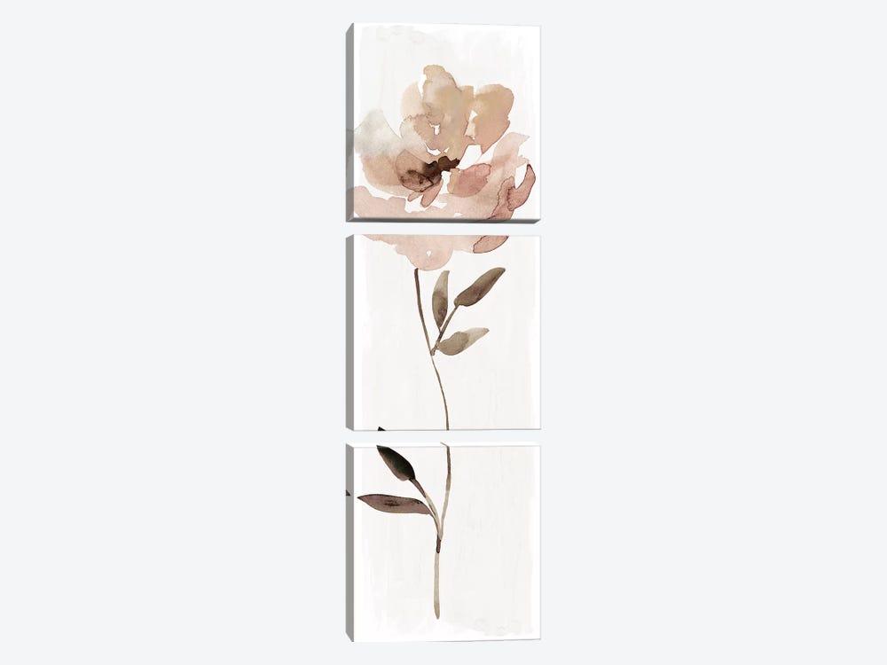 Neutral Bloom I by Carol Robinson 3-piece Canvas Print