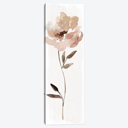 Neutral Bloom I Canvas Print #CRO946} by Carol Robinson Canvas Print