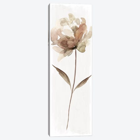 Neutral Bloom II Canvas Print #CRO947} by Carol Robinson Canvas Print