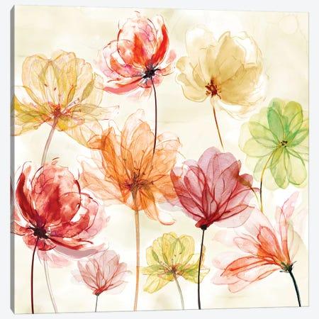 Splash Of Color Canvas Print #CRO952} by Carol Robinson Art Print