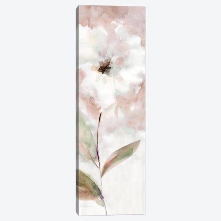 Summer Bloom I Canvas Print #CRO958} by Carol Robinson Canvas Print