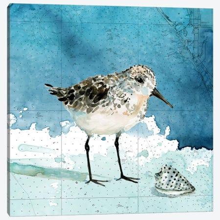 Bay Shore Sandpiper I Canvas Print #CRO965} by Carol Robinson Art Print