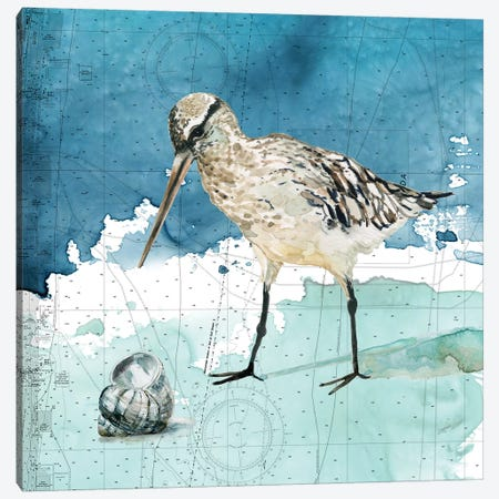 Bay Shore Sandpiper II Canvas Print #CRO966} by Carol Robinson Art Print