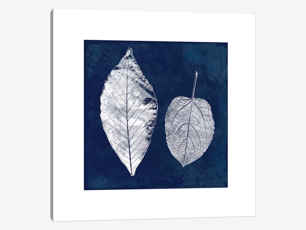 Cyanotype Ash Leaves by Carol Robinson 1-piece Canvas Wall Art