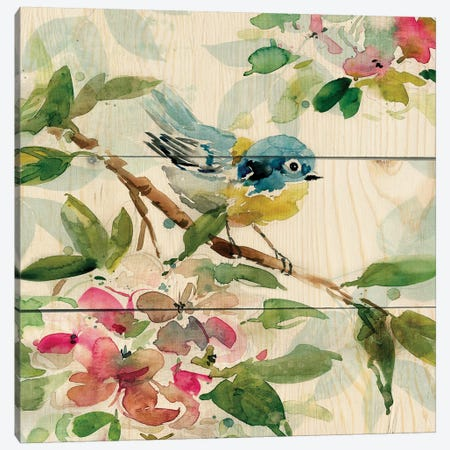 Birds and Blossoms I Canvas Print #CRO972} by Carol Robinson Canvas Print