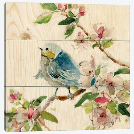 Birds and Blossoms II Canvas Print #CRO973} by Carol Robinson Art Print