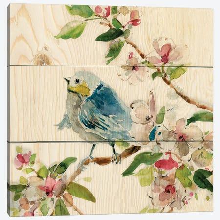 Birds and Blossoms II Canvas Print #CRO973} by Carol Robinson Art Print
