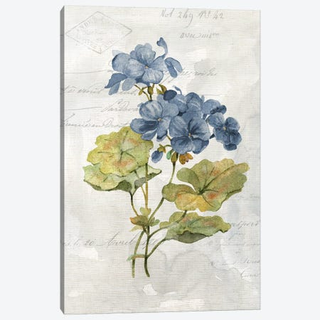 Blue Linen Geranium Canvas Print #CRO975} by Carol Robinson Canvas Wall Art