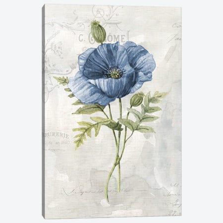 Blue Linen Poppy Canvas Print #CRO977} by Carol Robinson Canvas Artwork