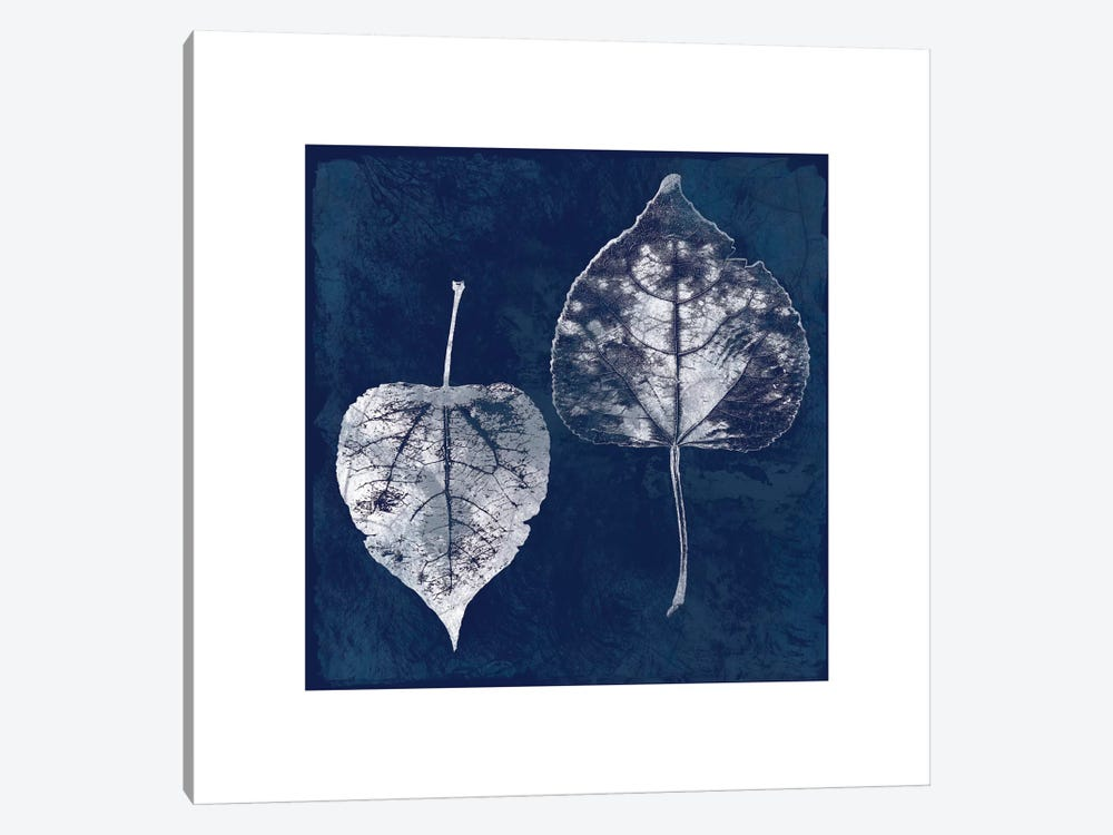 Cyanotype Aspen Leaves 1-piece Canvas Art Print