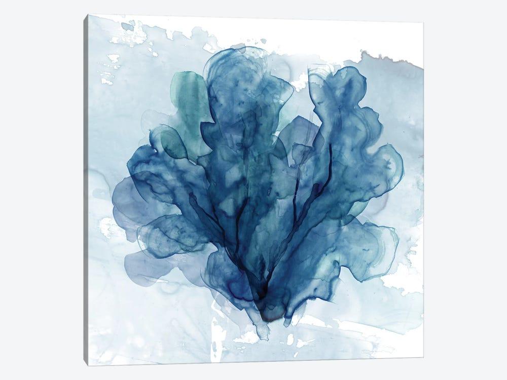 Coastal Coral II by Carol Robinson 1-piece Canvas Art