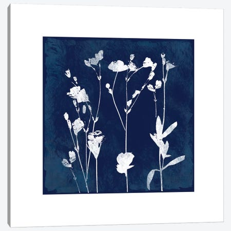 Cyanotype Botanical I Canvas Print #CRO98} by Carol Robinson Canvas Art Print