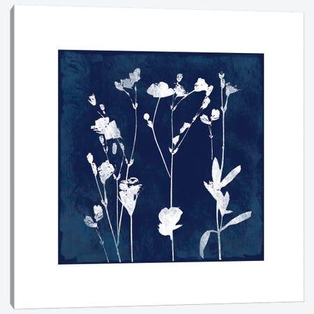 Cyanotype Botanical I Canvas Print #CRO98} by Carol Robinson Canvas Art Print