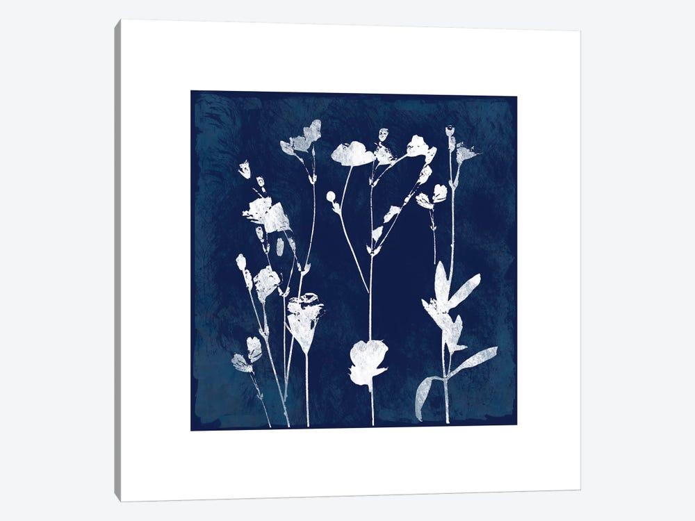 Cyanotype Botanical I by Carol Robinson 1-piece Canvas Wall Art
