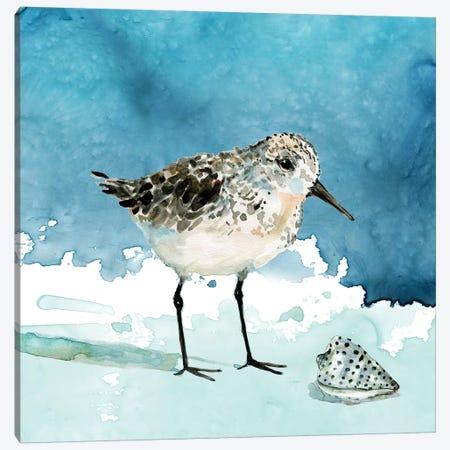Delray Sandpiper I Canvas Print #CRO991} by Carol Robinson Canvas Print