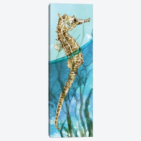 Delray Seahorse I Canvas Print #CRO995} by Carol Robinson Canvas Art
