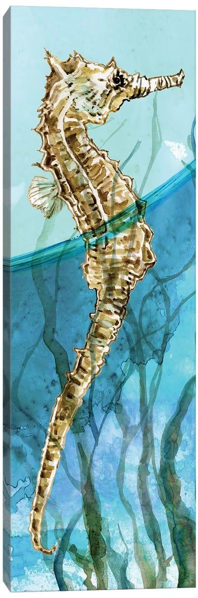 Delray Seahorse I Canvas Art Print