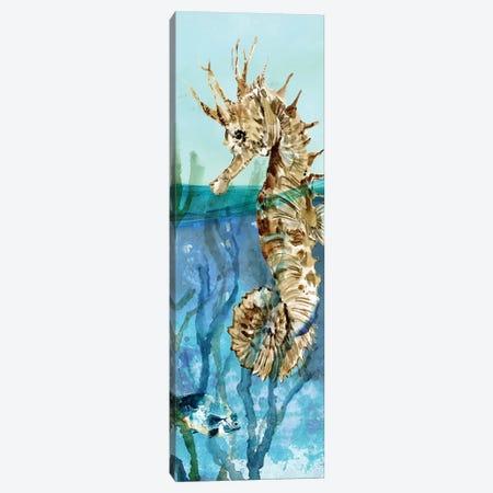 Delray Seahorse II Canvas Print #CRO996} by Carol Robinson Canvas Wall Art