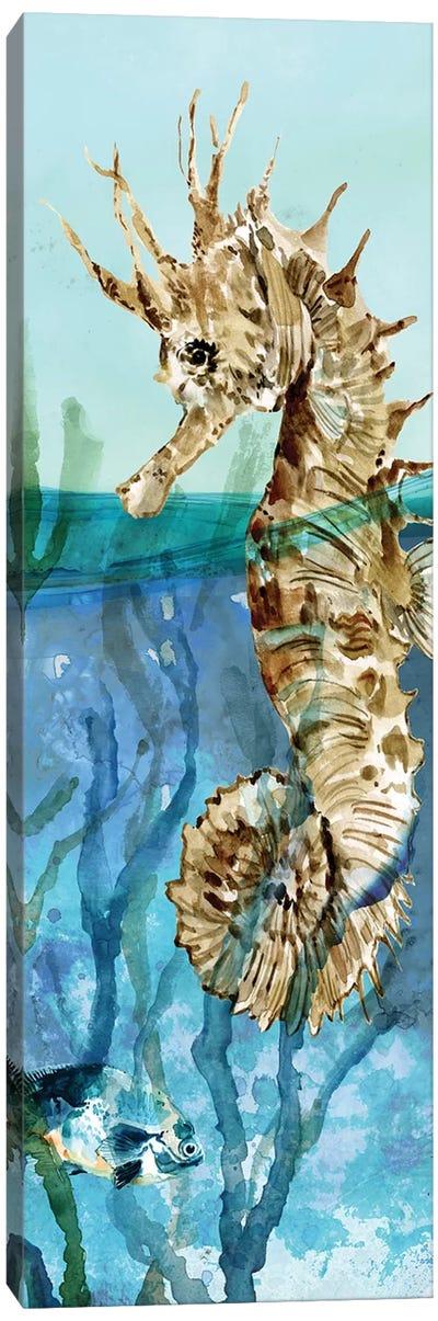 Delray Seahorse II Canvas Art Print