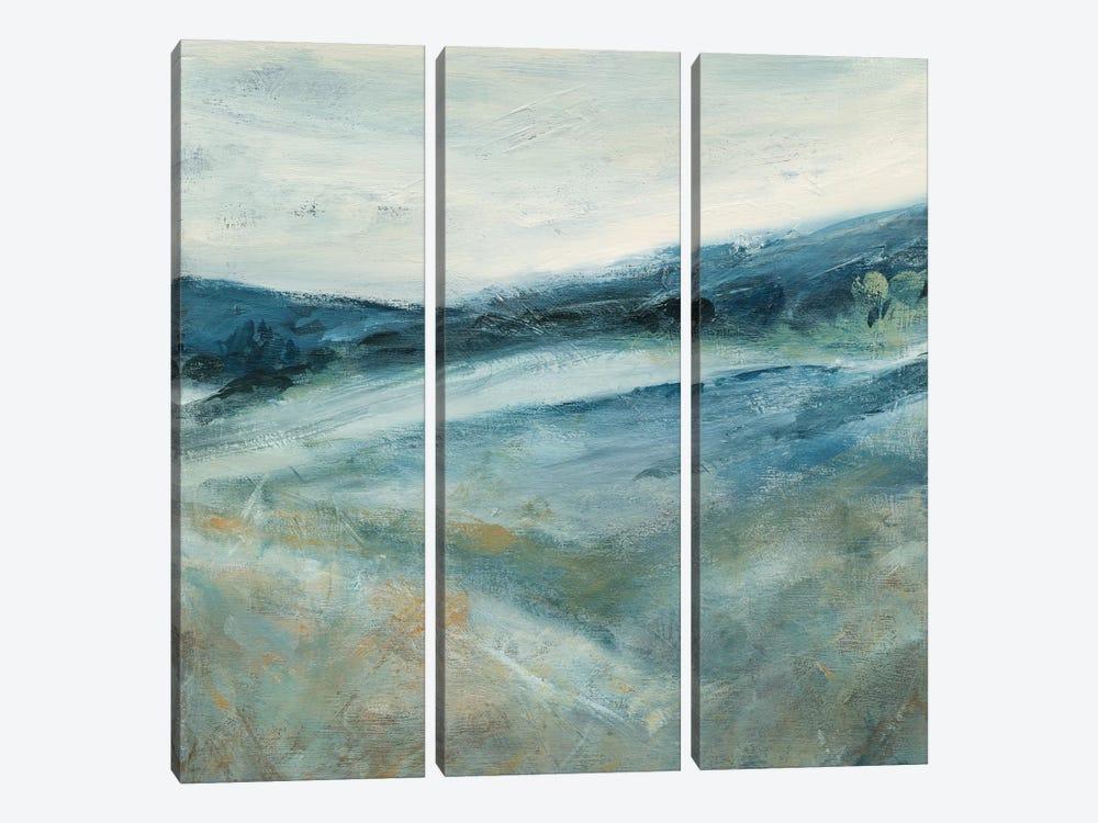 Distant Shadows II by Carol Robinson 3-piece Canvas Art Print