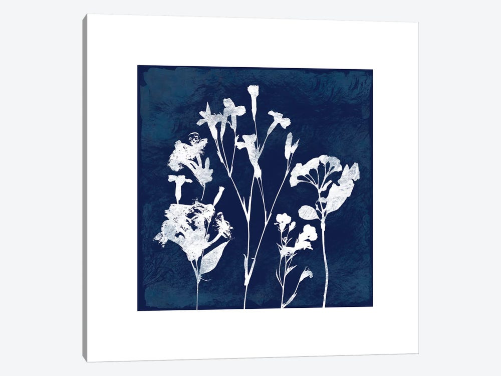Cyanotype Botanical II by Carol Robinson 1-piece Canvas Print