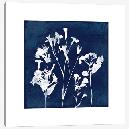 Cyanotype Botanical II Canvas Print #CRO99} by Carol Robinson Art Print