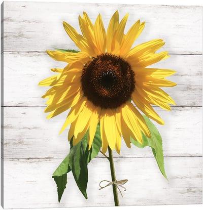 Farmhouse Sunflower Canvas Art Print