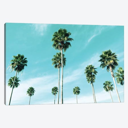 East Coast Palms Canvas Print #CRP1} by Natalie Carpentieri Canvas Wall Art
