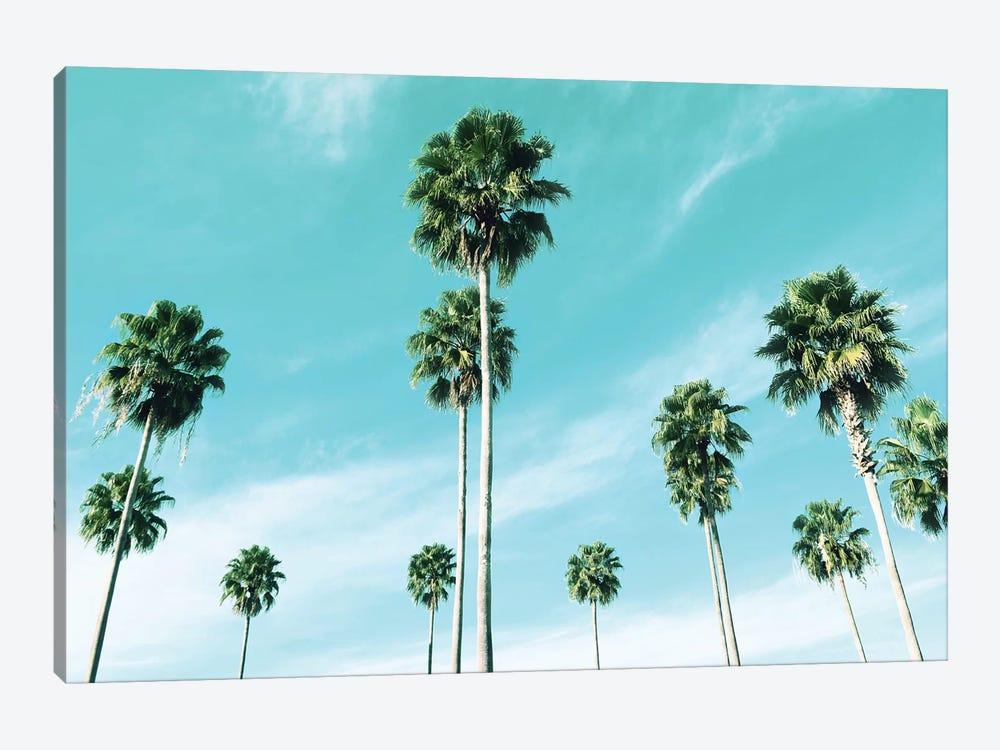East Coast Palms by Natalie Carpentieri 1-piece Canvas Artwork