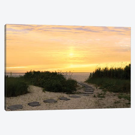 Sunset Path Canvas Print #CRP30} by Natalie Carpentieri Canvas Wall Art