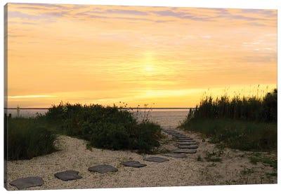 Sunset Path Canvas Art Print