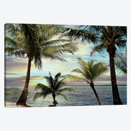 Honduras Sunset Canvas Print #CRP5} by Natalie Carpentieri Art Print