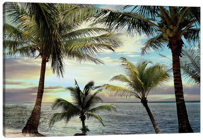 Honduras Sunset Canvas Art Print