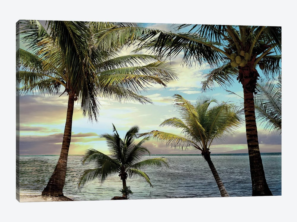 Honduras Sunset by Natalie Carpentieri 1-piece Canvas Art