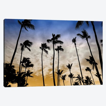 Evenings Edge Canvas Print #CRP90} by Natalie Carpentieri Canvas Wall Art