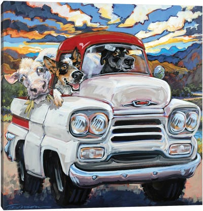 Cattle Drive Canvas Art Print