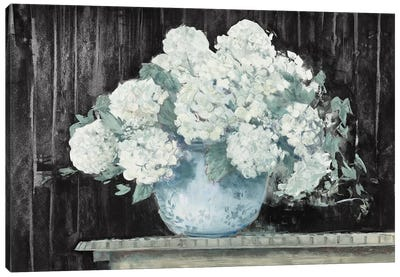 White Hydrangea on Black Crop Canvas Art Print