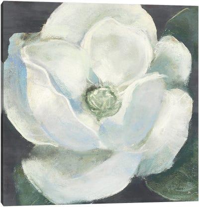 Magnolia II Sage Canvas Art Print