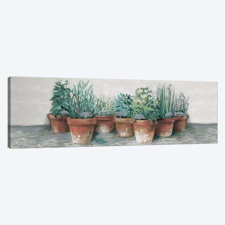 Pots of Herbs II Cottage v2 Canvas Print #CRW8} by Carol Rowan Canvas Print