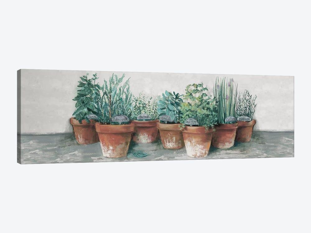 Pots of Herbs II Cottage v2 by Carol Rowan 1-piece Canvas Artwork
